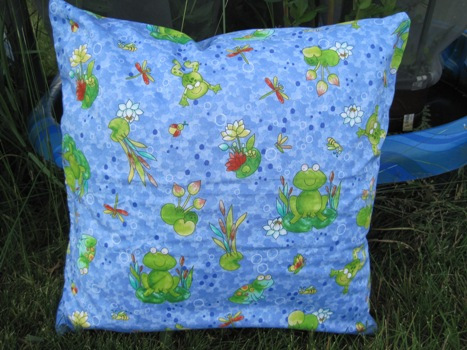 Photo of frog pillow case