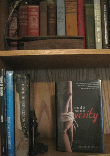 "Book ""Code Name Verity"" on a shelf"